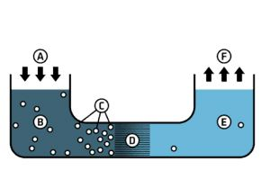 Reverse-Osmosis-Diagram