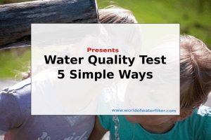 Water-Quality-Test