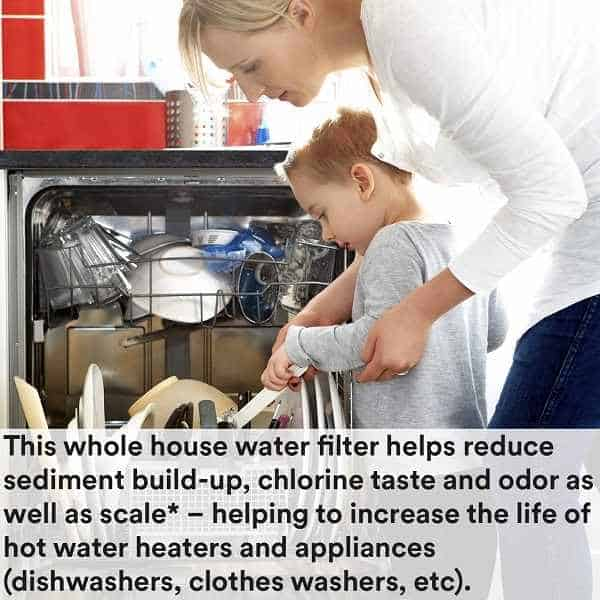 A mom and child doing household chores using one of the Best Salt-Free Water Softener
